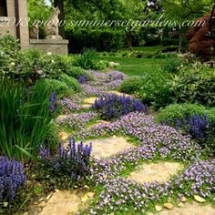 Garden Ideas Edmonton front yards in bloom edmonton - google search | landscaping