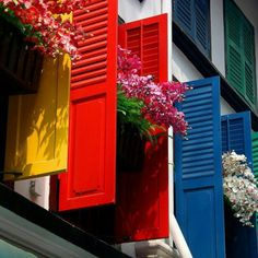 windows, shutters and flowerboxes.