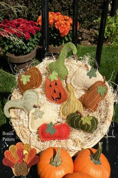 Fall Harvest Pins Wool Applique