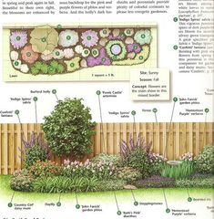 Front Yard Garden Design Views from the North Side of Dallas: How To Build a Flower Bed Texas Landscaping, Front Yard Landscaping, Landscaping Ideas, Landscaping Plants, Patio Ideas, Backyard Ideas, Full Sun Landscaping, Backyard Designs, Lawn And Garden