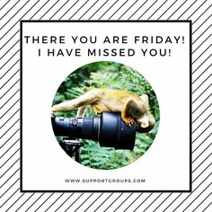 #Friday #laughteristhebest #foundyou #boo #fourdayweekend #monkeysee #monkeydo Laugh Of The Day, I Have Missed You, Online Support, Friday, Movie Posters, Film Poster, Billboard, Film Posters