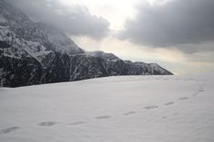 Triund: Why It Should Be Your First, If It Isn't Already!!