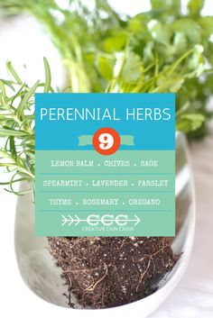 Annual and Perennial Herb Cheat Sheets