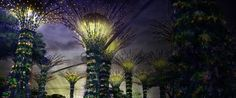 Gardens by the Bay- Singapore