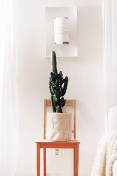 Kaktus från Ikea i Ernstpåse Planter Pots, Ikea, Photo And Video, Instagram, Cactus, Ikea Co