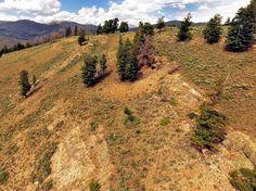 Pegmatite Brown Derby 3 mine / Tourmaline Mining Claim- Gunnison Colorado Lode