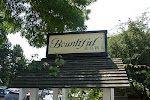 Love Bountiful Home and Nursery in Edmonds WA