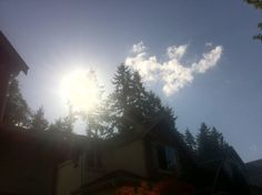#Roxie's #SUPRA #SAIYAN  #SUN #BOMB in your #FUCKING  #DRAGONIAN #DRACONIAN #FUCKTARD  #FACES Yeah? Get #SHREKT Sun?