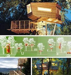 Modern Eco Friendly House Plans Best Of 10 Amazing Tree Houses Plans Designs Ideas Luxury Tree Houses, Cool Tree Houses, Home Design Plans, Plan Design, Tree House Plans, Woodland House, Tree House Designs, Eco Friendly House, Architect Design