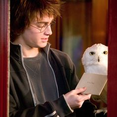 Penned on behalf of Professor McGonagall by props concept artist Miraphora Mina, a number of the letters sent to Harry had to be printed on paper light enough for real owls to carry; and for the scene in which a blizzard of letters blasts through the living room at Privet Drive, ten thousand envelopes were printed on even lighter paper (the kind used for bank notes) so that they could be easily blown all over the place. #HarryPotter @MinaLimaDesign