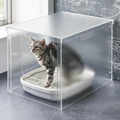 Everybody who has adopted a cat knows the mess they can cause when using their litter box. The Acrylic Cat Litter Cover has a transparent design and a Cat Litter Tray, Litter Box Covers, F2 Savannah Cat, Cat Room, Pet Furniture, Furniture Removal, Cheap Furniture, Spring Cleaning, Cat Life