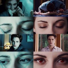 315 Twihards @_thetwilightsaga_xx Instagram photos | Websta