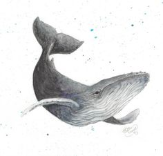 https://society6.com/product/humpback-whale-dz1_print
