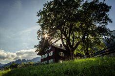 Walser architecture - Walserhaus #kleinwalsertal #visitvorarlberg Festivals, Cabin, Traditional, House Styles, Life, Home Decor, House, Homemade Home Decor, Cabins