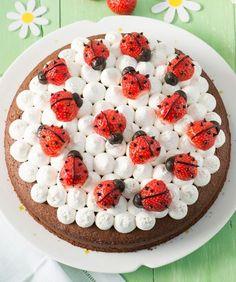 Children's birthday cakes from healthy to fancy: 4 ingenious recipes - Kuchen // Dessert-Rezepte - Kuchen Food Cakes, Delicious Cake Recipes, Yummy Cakes, Ladybird Cake, Chocolate And Vanilla Cake, Tall Cakes, Ganache Recipe, Strawberry Cake Recipes, Baked Strawberries