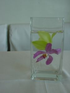 submerged orchids in square vases