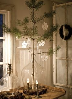 pine branch in a clear demi-john with white snowflakes