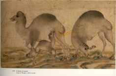 A family of camels Imperial Mughal, 1600 or earlier