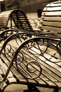 Iron bench.  New Orleans.