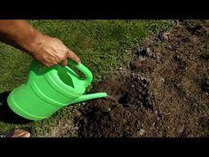 Najprostszy sposób na kreta - YouTube Watering Can, Garden Hose, Canning, Diy, Outdoor, Youtube, Crete, Outdoors, Bricolage