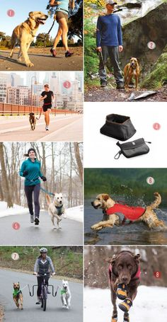 Investing in some fitness gear for your dog will make your runs, bike rides, or other workout sessions much easier in the long run. Here are just a few options we've found for fitness gear for dogs to get you started with working out with your best buddy.