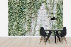 Ivy Wall - Fotobehang & Behang - Photowall
