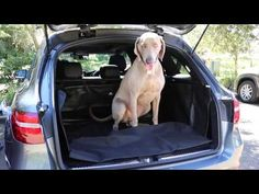 Running Dog Accessory Store — a boot liner to protect your station wagon cargo hold with sides to protect upholstery | Running Dog Accessory Store