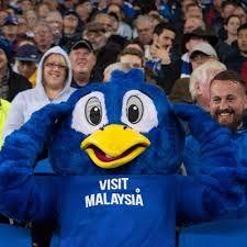 Pin On Sbc Cardiff City Fc Blue Birds
