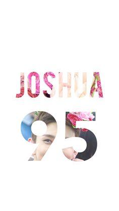 Seventeen • Joshua • 95