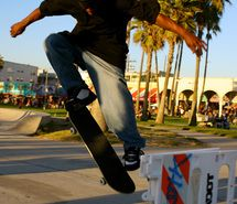 Inspiring picture california, palm trees, skate, skateboard, venice beach. Resolution: 470x705 px. Find the picture to your taste!
