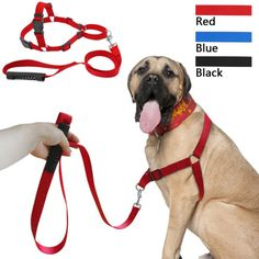 Stop-Pulling-Nylon-Easy-Walking-Dog-Harness-and-Leash-Set-for-Medium-Large-Dogs