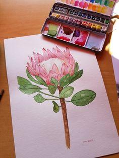 King Protea, Watercolor, Tableware, Art, Watercolor Painting, Dinnerware, Dishes, Kunst, Place Settings