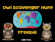 LMN Tree: Amazing Owls: Free Resources and Activities. Students will have fun finding different owl species that live on 6 different continents.