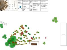milkwood-food-forest-base-map-no-contour_2