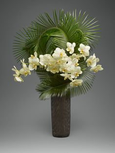 Sago Palm - A modern and elegant arrangement of 4 stems of cut yellow phalaenopsis orchids and sculpted sago palm  in a textured ceramic mizo vase   L'Olivier Floral Atelier