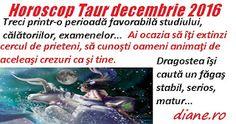 diane.ro: Horoscop Taur decembrie 2016 Astrology