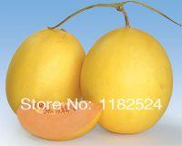 Chinese Kane 723 F1 Sweet Melon Seeds fruit seeds (30 SEEDS)