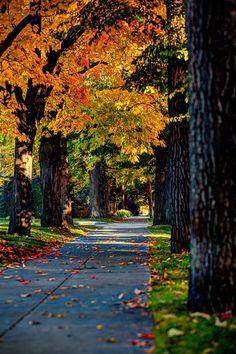 Autumn Sidewalk, Spokane, Washington.