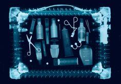Reise Beauty: Case Scenario | Harper's BAZAAR