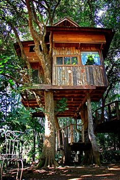 Quick To Build Moveable Greenhouse Options Treehouse At The Rabeang Pasak Chiangmai Treehouse Resort In Northern Thailand. Beautiful Tree Houses, Cool Tree Houses, Cubby Houses, Play Houses, Bungalow, Luxury Tree Houses, Normal House, Woodland House, Backyard Trees