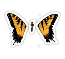 Paramore Brand New Eyes sticker.  http://www.redbubble.com/people/username001/works/16426973-brand-new-eyes?p=t-shirt&style=longsleeve&body_color=white&print_location=front