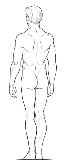 306 Best Character Anatomy Male Images On Pinterest In 2018