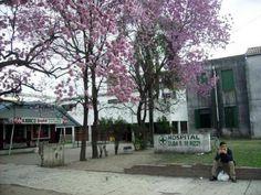 Reconquista #20N: Atención mínima en centros de salud