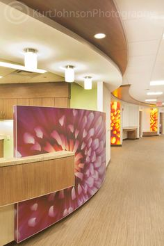 Large scale botanicals install shots, Mother Baby Hospital Center- Minneapolis     http://www.kurtjohnsonphotography.com/