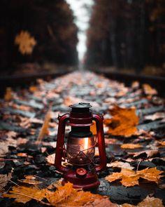 Lost in an Autumn & Winter dream Autumn Photography, Amazing Photography, Art Photography, Autumn Scenery, Autumn Aesthetic, Autumn Cozy, Shooting Photo, Jolie Photo, Autumn Inspiration