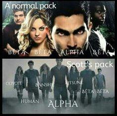 Normal wolf pack vs scott's pack