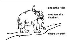 rider and elephant - Google zoeken