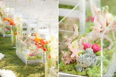 """seaside"" themed aquariums lining the outdoor aisle. (Hote del Coronado, Karen Tran Florals)"