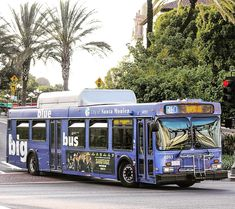 (at Downtown Los. Bus Number, Blue Bus, New Flyer, Public Transport, Street Photography, California, Gta, Buses, Portrait