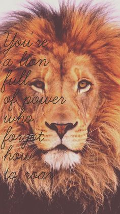 For King & Country Wallpaper • Run Wild, Live Free, Love Strong